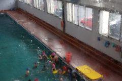 Clase abierta de natacion (6)