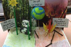 Educación Ambiental (2)