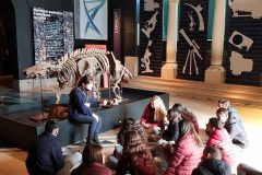 Museo Ciencias Naturales (17)