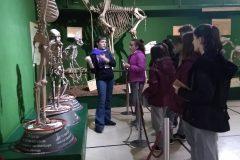 Museo Ciencias Naturales (2)