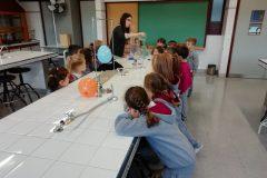 Ciencias Sala 5 TM (3)
