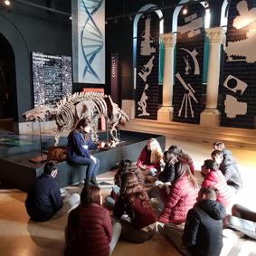 Visita al Museo de Ciencias Naturales